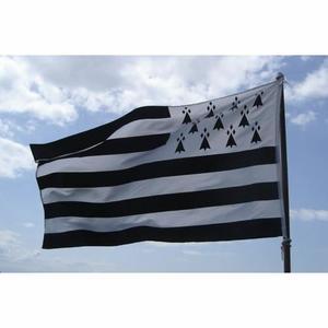 L'une des meilleures voyantes en Bretagne: drapeau-de-la-Bretagne