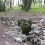 La foret de Brocéliande, un lieu de rencontre entre Arthur et la Fée Liliane