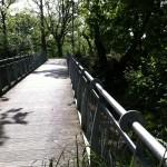 le pont du passage