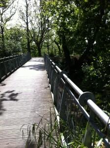 Voyante de Bretagne: Le pont du passage