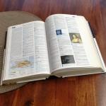 Dictionnaire de l'art divinatoire